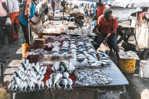 Frischer Fisch auf dem Fischmarkt Sansibar – Foto