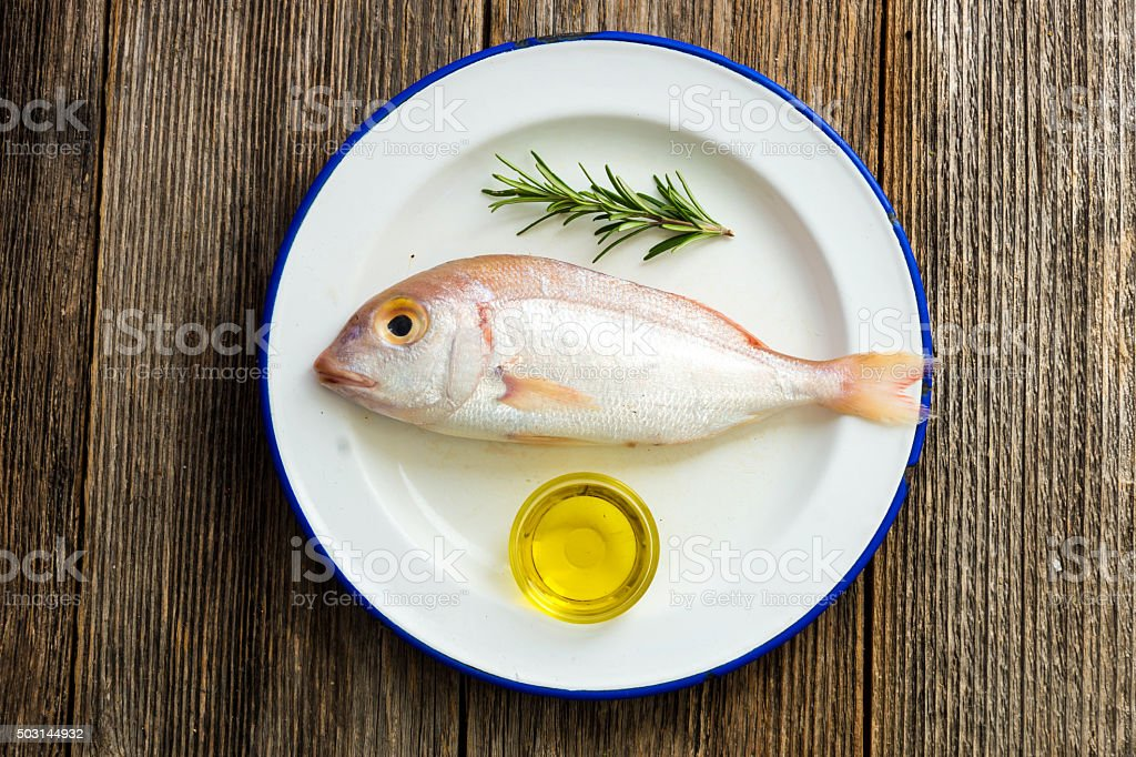 Fresh fish common pandora (Pagellus erythrinus) stock photo