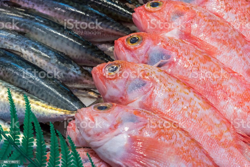 Fresh fish for sale at a market in Madrid stock photo