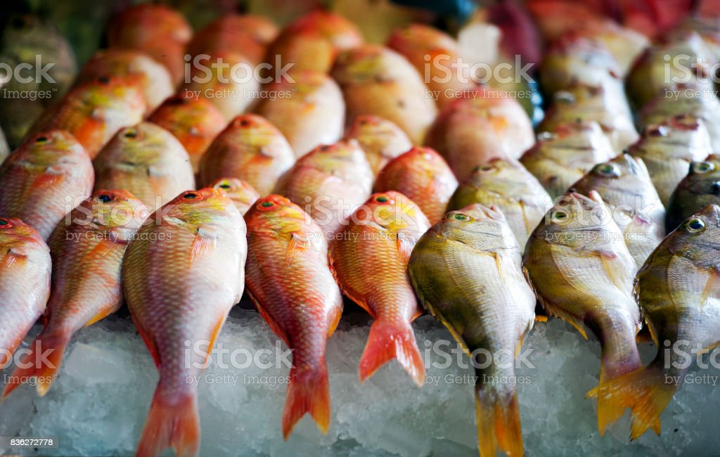 Fresh fish for sale, Fort Kochi waterfront, Kerala, Southern India stock photo
