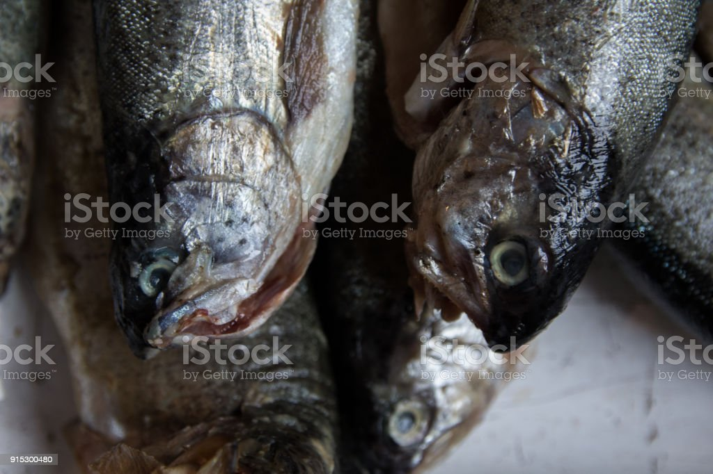 Fresh fish for the oven stock photo