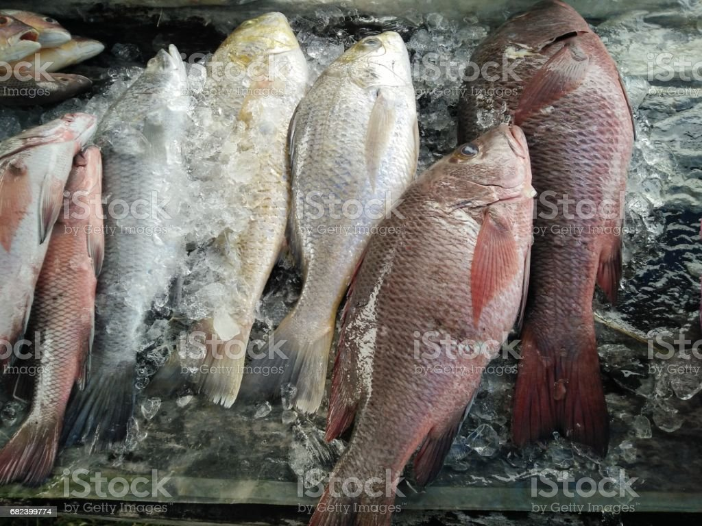 Fresh fish from sea at local Market Thailand royalty-free stock photo