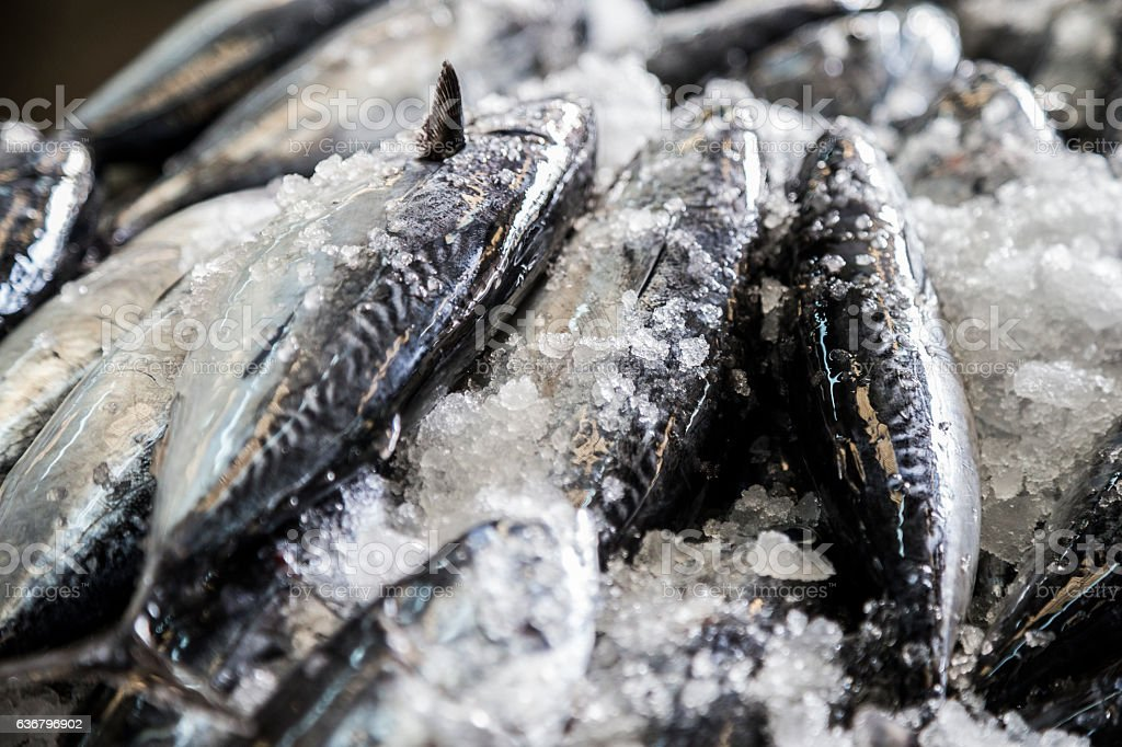 Fresh fish iced up and left on a table stock photo