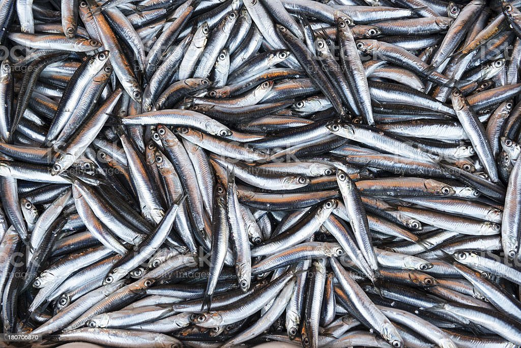 Pile of fresh fish in market royalty-free stock photo
