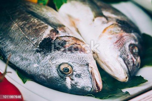 635931692istockphoto Fresh fish in the fish market 1011997646
