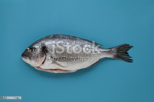 Sea bream on blue colour coded cutting board