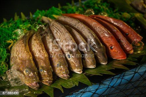 635931692istockphoto Fresh fish on display 871883400