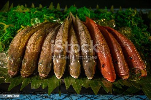 635931692istockphoto Fresh fish on display 871883438