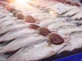 Fresh Fish on ice at Fish market with sunshine morning. Selective focus