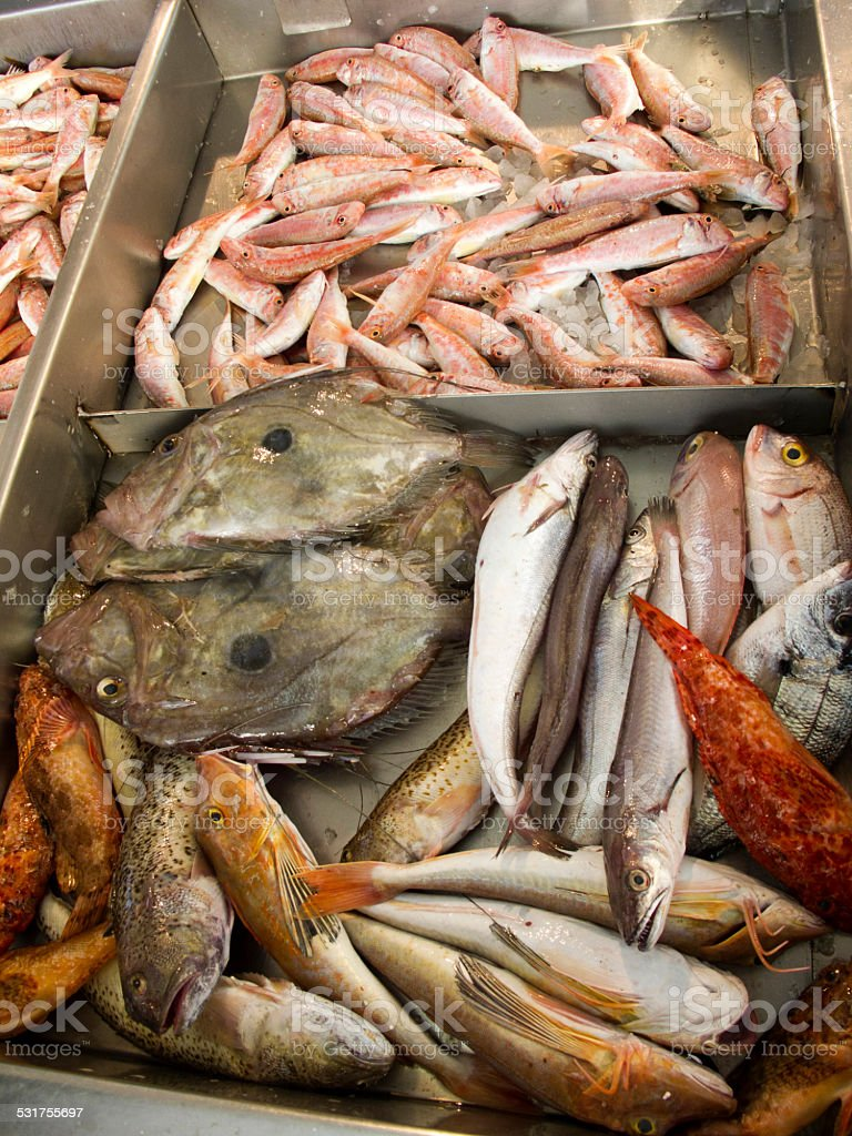 Fresh fish on market stock photo