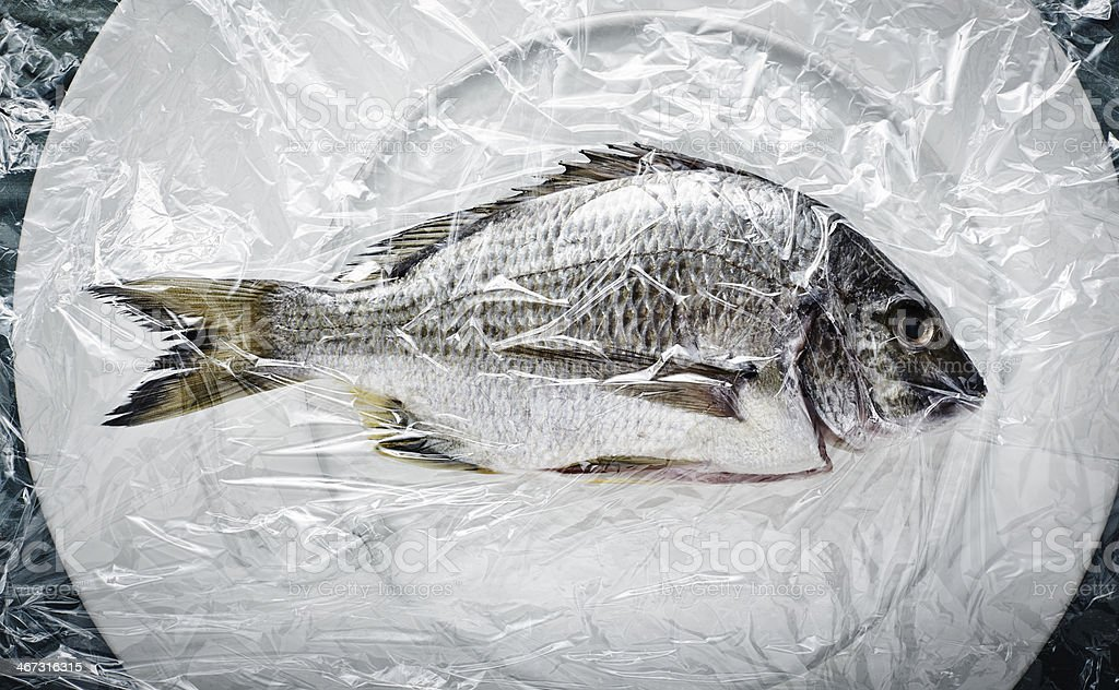 fresh fish on white plate stock photo