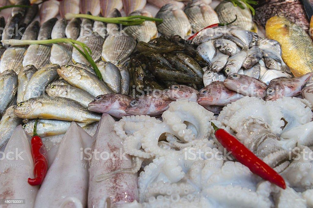 Fresh Fish. stock photo