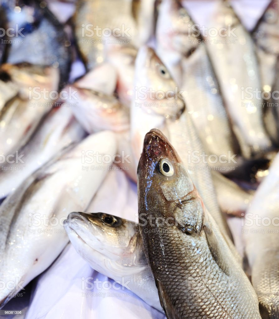 Fresh fish royalty-free stock photo