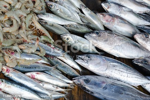 635931692 istock photo Fresh fish tuna, sardines and shrimps -  selling at fish market. 1139620076