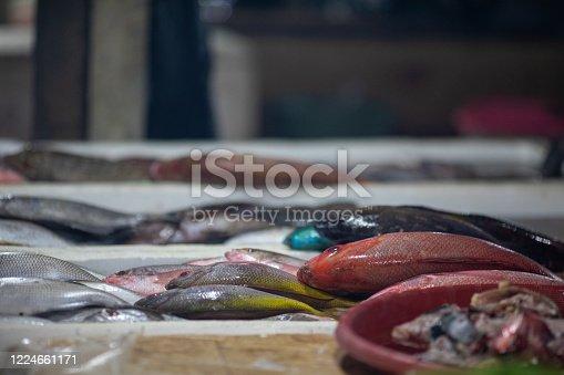 Fresh fishes on fish market