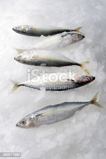 istock Fresh fishes on ice 490517880