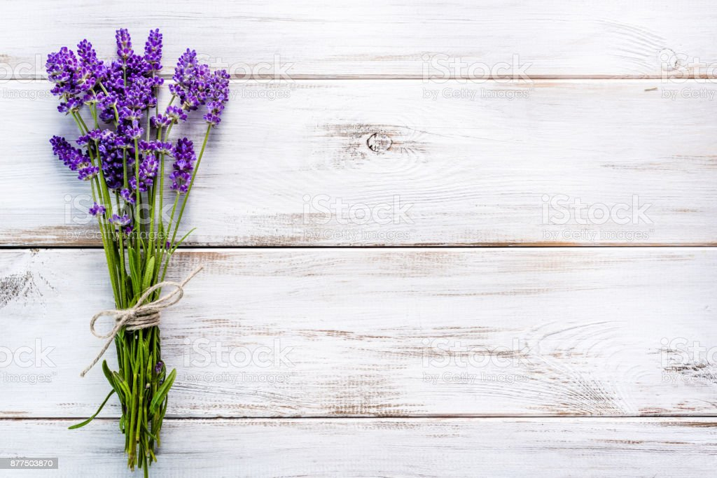 Fresh flowers of lavender bouquet, top view on white wooden background royalty-free stock photo