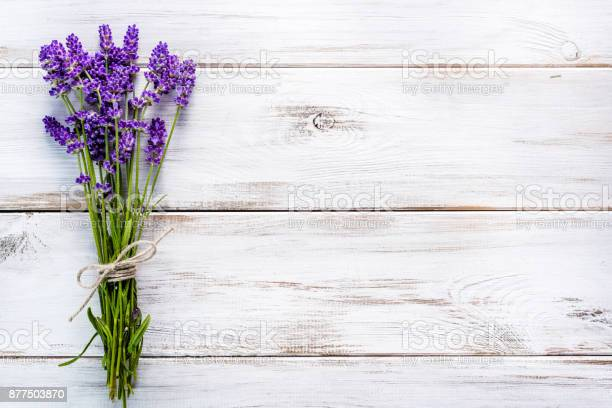 Fresh flowers of lavender bouquet top view on white wooden background picture id877503870?b=1&k=6&m=877503870&s=612x612&h=8vko uar0vn 0m8keaegreblnmanta16y5kh5mf pug=