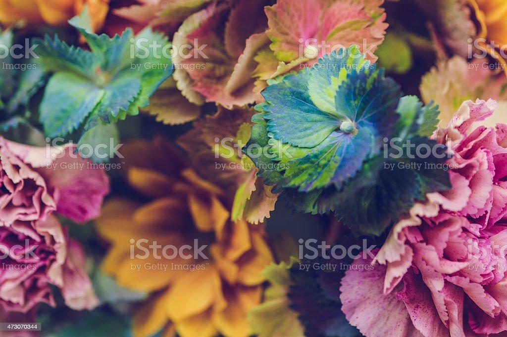 Fresh flowers still life stock photo