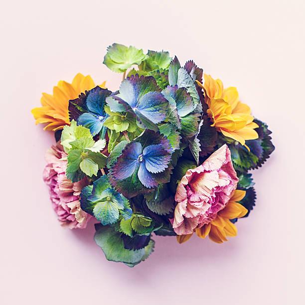 Frische Blumen Stillleben – Foto