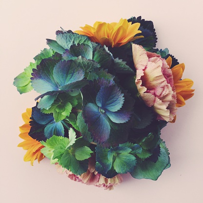 Contemporary photo of fresh flowers still life