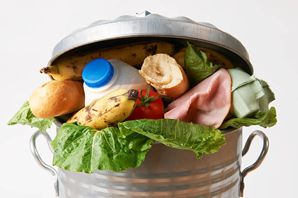 fresh food in garbage can to illustrate waste - avfallsbehållare bildbanksfoton och bilder