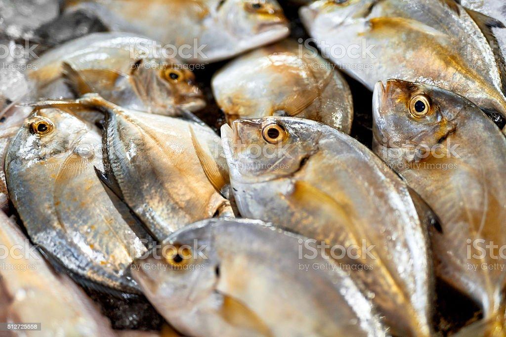 Повар отделяет филе рыбы, шеф-повар готовит рыбы для приготовления.