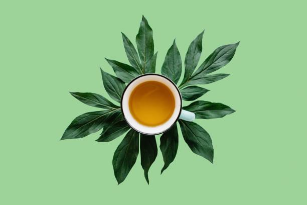 świeża pachnąca i zdrowa herbata ziołowa lub zielona w kubku na zielonym tle. czas na herbatę - detoks zdjęcia i obrazy z banku zdjęć