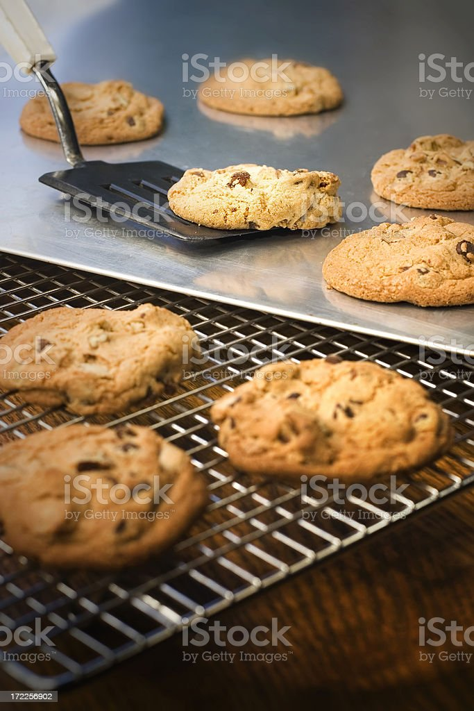 Fresh From the Oven royalty-free stock photo