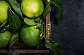 fresh from tree lime fruit with leaves