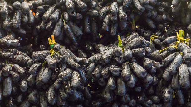 Fresh Fruit Brunch Black Grapes on Shelf in Fresh Fruit market Thailand South East Asia Travel Background stock photo