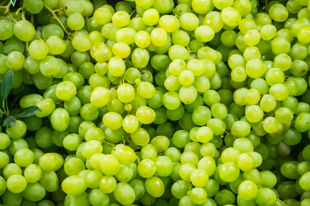 fresh fruit brunch  Green grapes on shelf in fresh market Thailand stock photo