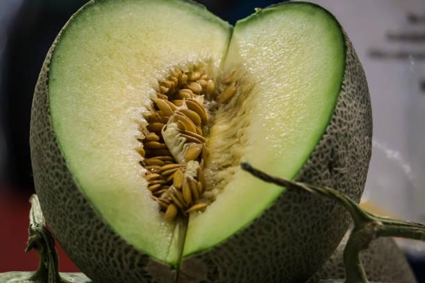 Fresh Fruit Green Melon cutting Show on Shelf in Fresh Fruit market Thailand Travel Background Concept stock photo