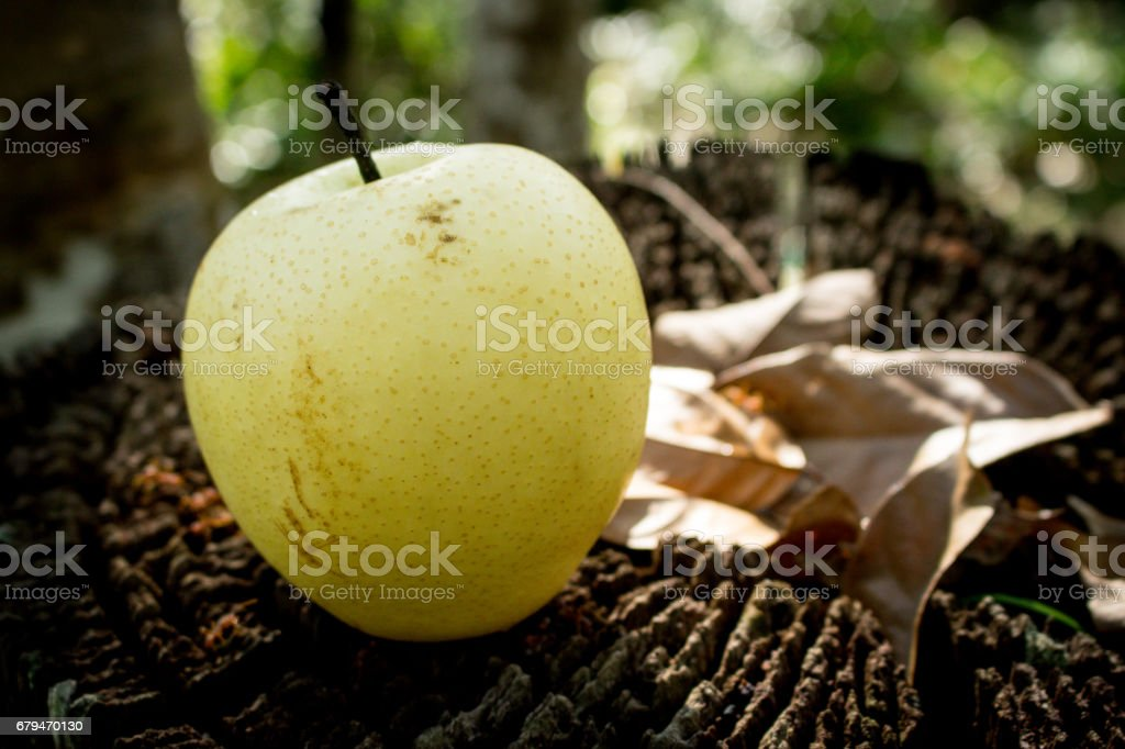 A Fresh Fruit on Wooden Background. royalty-free stock photo