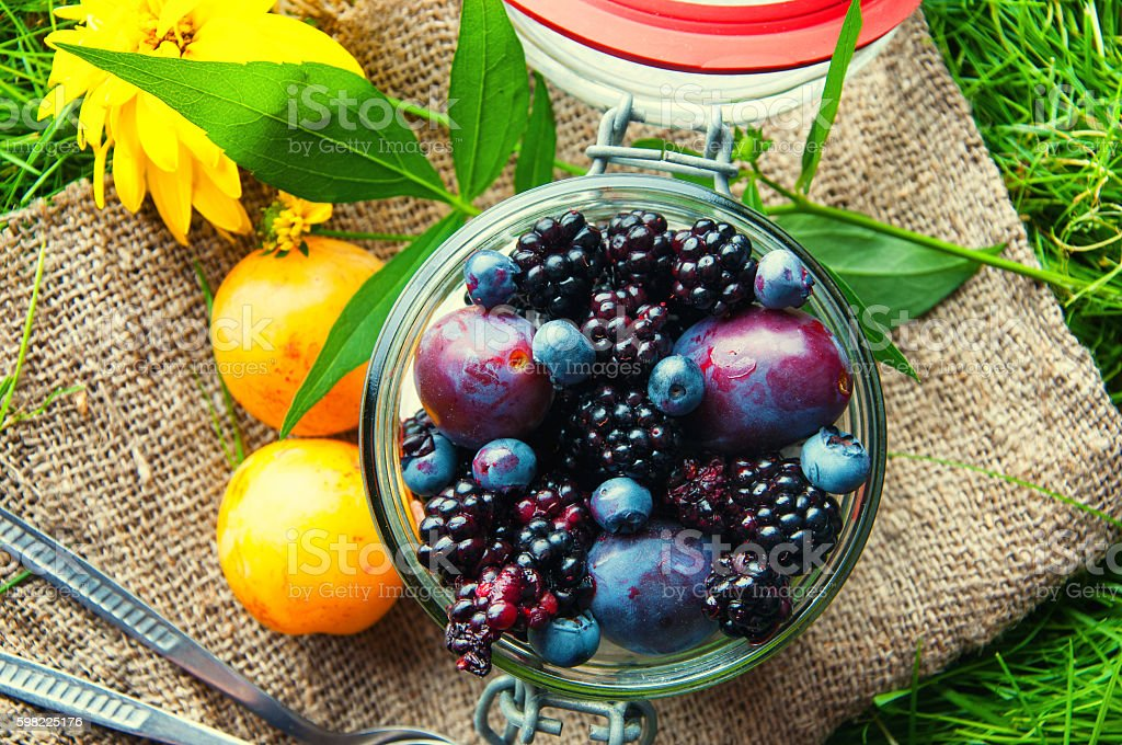 Fresh fruit sealed in a jar. Grass background foto royalty-free
