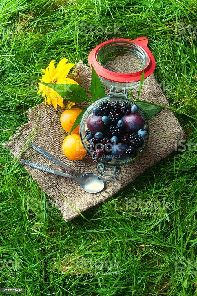 Fresh fruit sealed in a jar. Grass background photo libre de droits