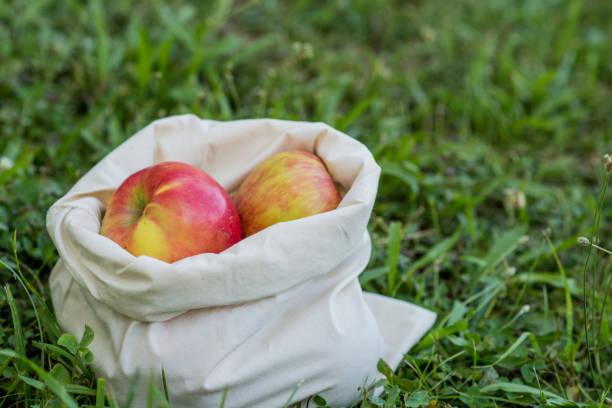 Fresh Fruit Without Plastic Waste stock photo