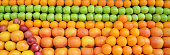 fresh fruits and vegetables background