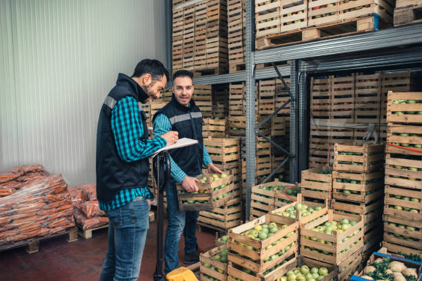 Fresh fruits and vegetables in warehouse Two workers loading in the warehouse food warehouse stock pictures, royalty-free photos & images