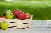 Fresh garden green and red apples in box. On outdoor table with copy space for your text