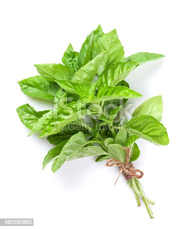 Fresh garden herbs. Green basil. Isolated on white background