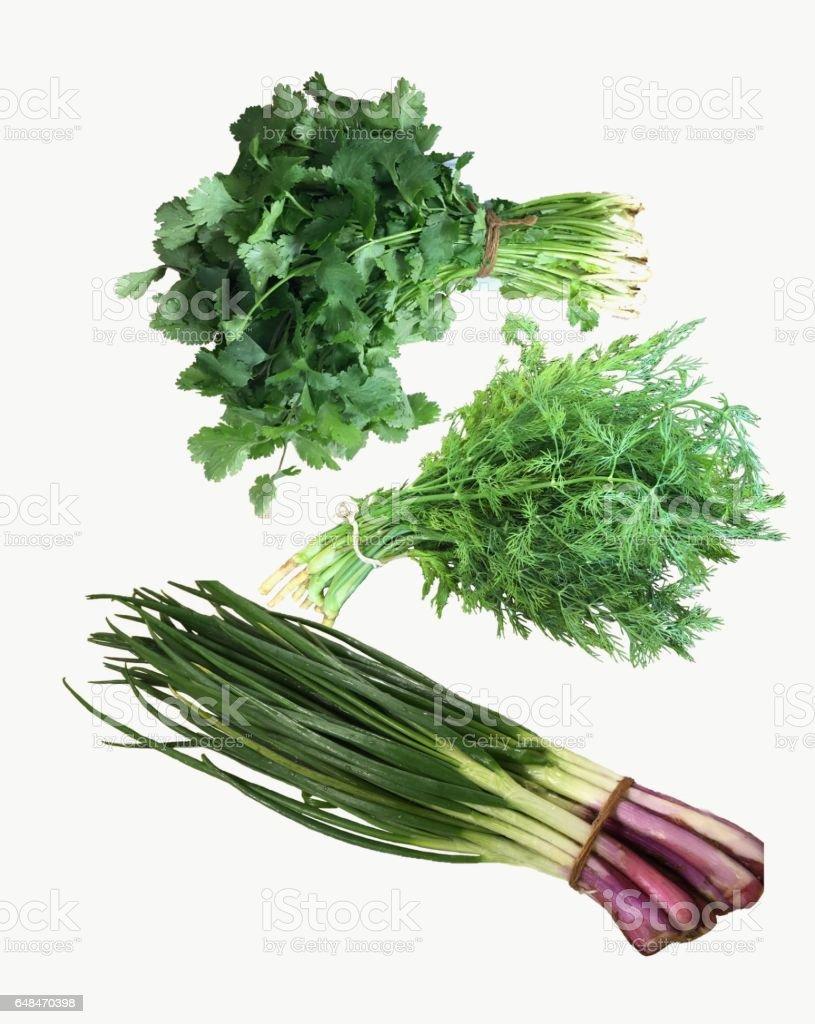 Fresh garden herbs.  Set of spring green leafy. Organic food concept. stock photo
