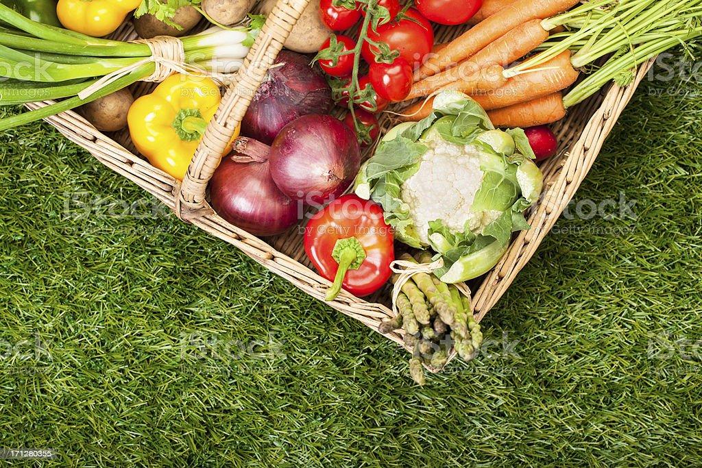 Fresh Garden Produce: in a basket royalty-free stock photo