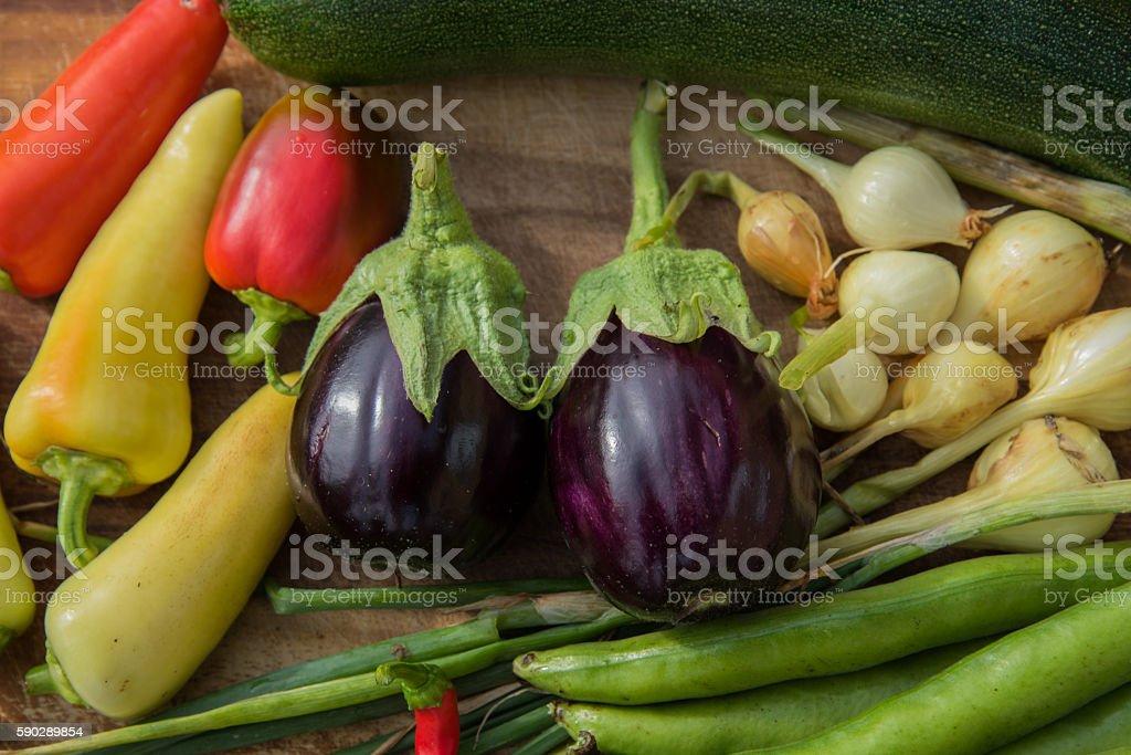 Fresh garden vegetable royaltyfri bildbanksbilder