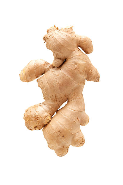 fresh ginger root isolated on white background - ginger stock photos and pictures