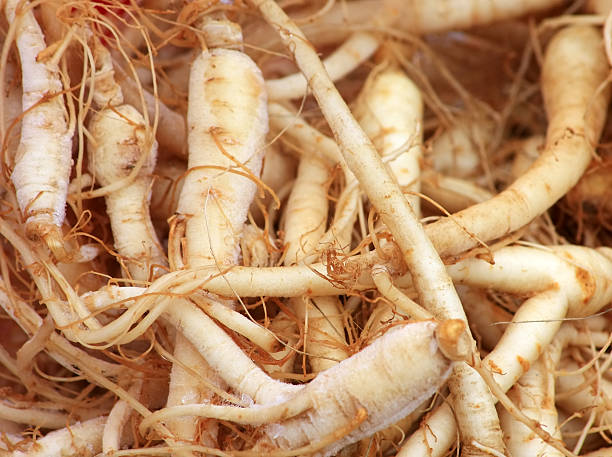 Fresh Ginseng Roots  root hair stock pictures, royalty-free photos & images