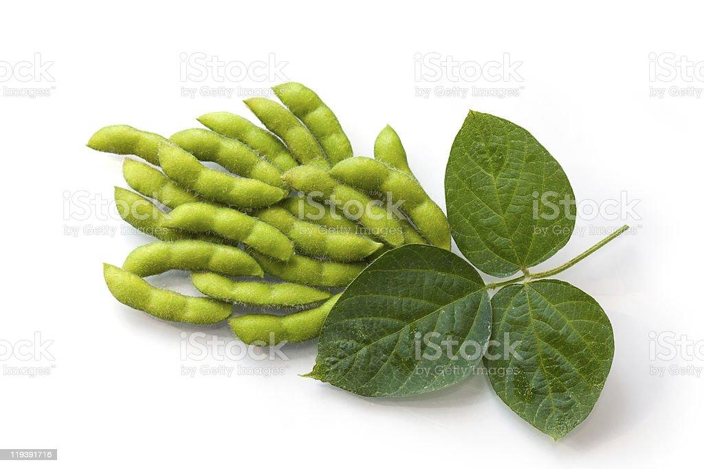 Fresca habas de soja - foto de stock