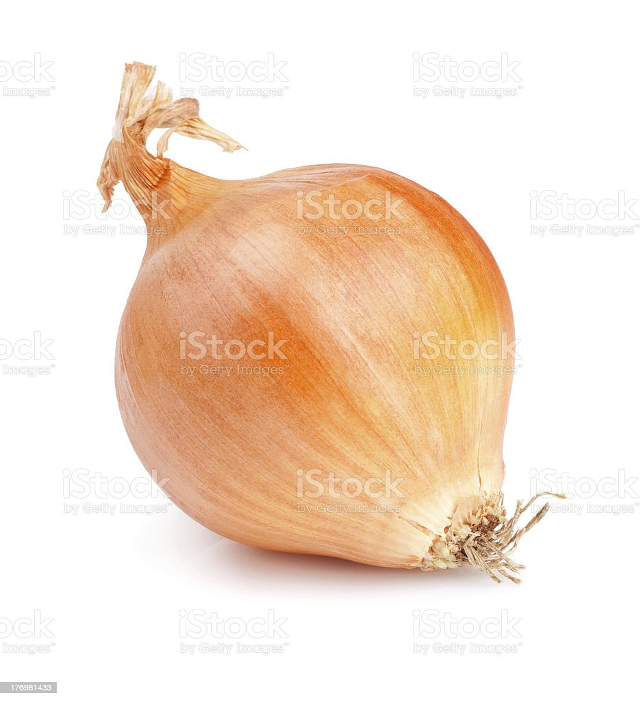 Fresh golden onions isolated on white background stock photo