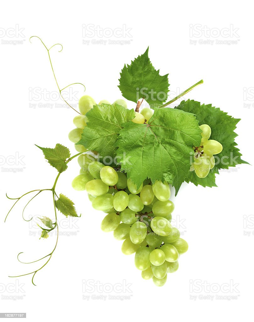 Fresh grape cluster with leaves stock photo