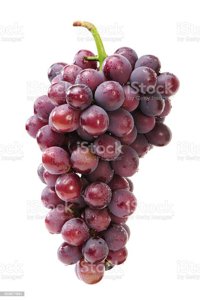 Fresh grapes stock photo